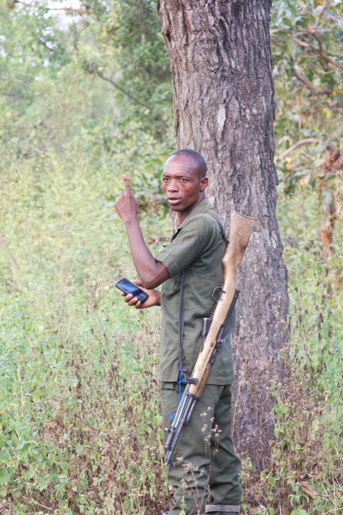 The park ranger tracking an elephant